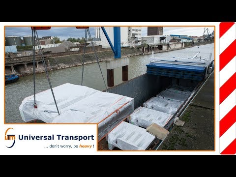 Universal Transport - One plant, many transports, and yet no chaos