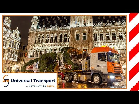 Universal Transport - A Christmas tree for Brussels